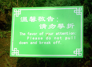 China y el Chinglish