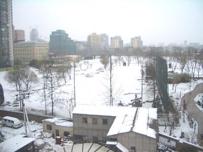 Una serata sotto la neve